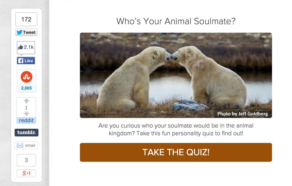 animal soulmate quiz