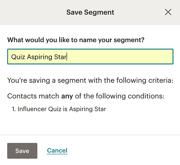 How to save segment in Mailchimp