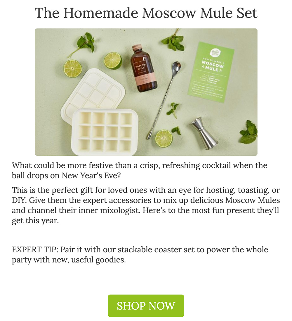Gift guide recommendation for Moscow Mule set