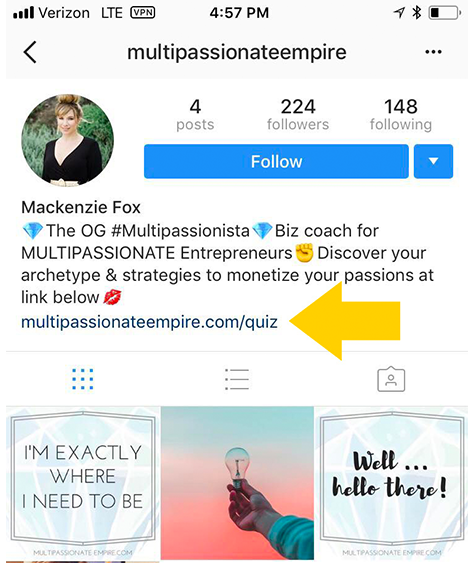Instagram bio from Multipassionate Empire with quiz link